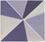 Amanda Marchand: Purple Coneflower (Kodak Supra Endura gloss), 2020