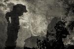 Angela Bacon-Kidwell: Beast, 2008