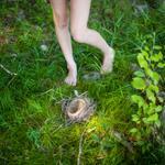 Cig Harvey: The Bird's Nest