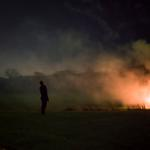 Cig Harvey: The Fire, 2015