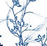 Dornith Doherty: Eucalyptus III, 2014