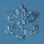 Douglas Levere: Snowflake 2015.01.26.001