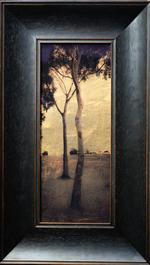 Kate Breakey: Eucalyptus Trees, Xmas Day, South Australia