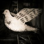 Keith Carter: Dove, 2018