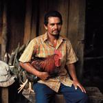 Kevin Kunishi: Adilio, Jinotega, 2010 (FSLN)