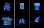 Laurie Tümer: Glowing Evidence: Studies in White, 2005