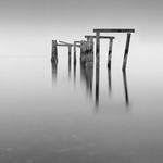 Michael Levin: Floating