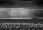Mitch Dobrowner: Ceiling over City, 2014