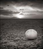 Nick Brandt: Abandoned Ostrich Egg, Amboseli 2007