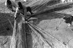 Stella Johnson: Borgop, Cameroon, 2003