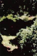 Terri Weifenbach: 20. July 1996