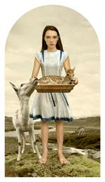 Tom Chambers: Wild By Nature