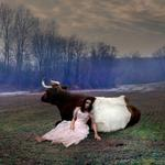 Tom Chambers: Cow Girl, 2006