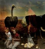 Traer Scott: Ostrich 2
