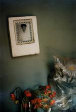 Tria Giovan: Portrait in Styrofoam Frame-Ciego de Avila, Cuba, 1993